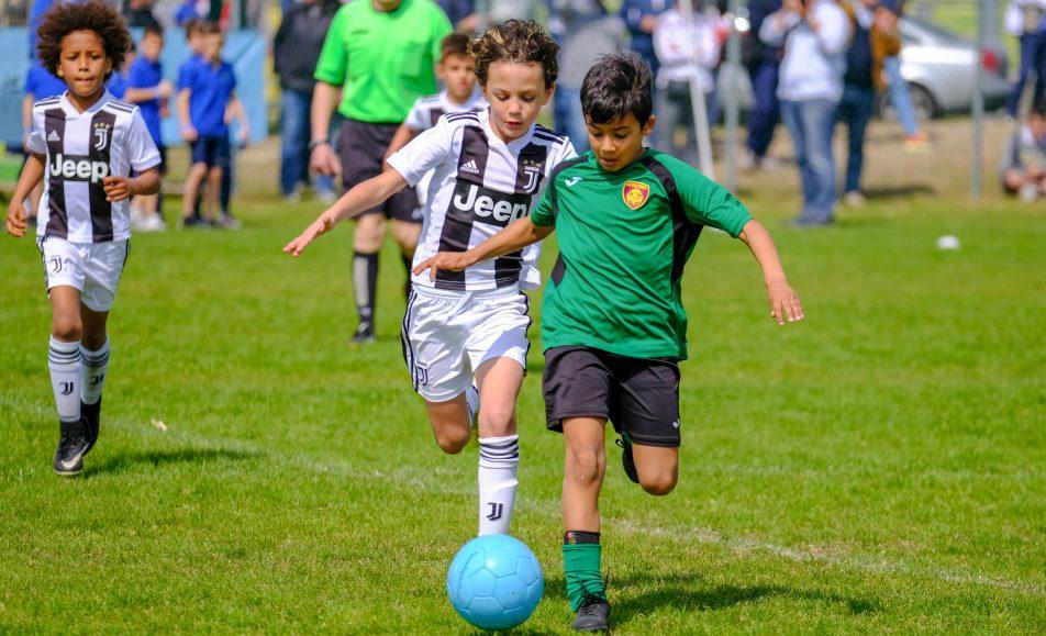 14° Venezia Cup